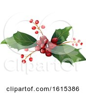 Clipart Of A Sprig Of Christmas Holly Royalty Free Vector Illustration by dero