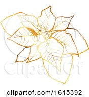 Golden Christmas Poinsettia