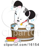 Cute Little Dalmatian Puppy Dog With A White Base And Black Spots One Of Them Resembling A Heart Sitting In A Barrel Of Water And Tilting Its Head While Taking A Bath by Maria Bell