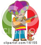 Cute Little Chihuahua Puppy Dog Wearing A Colorful Bandana Around Its Neck Howling And Sitting At The Feet Of A Male Mexican Musician Who Is Wearing Colorful Clothes And A Sombrero Singing And Playing A Guitar