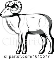 Black And White Ram