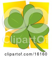 Green Four Leaved Clover Over A Yellow Background A Popular Symbol For Luck And For St Paddys Or Saint Patricks Day