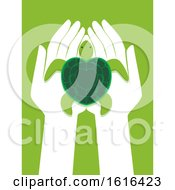 Hands Protect Marine Turtles Illustration