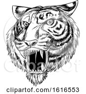 Roaring Angry Tiger Mascot Face Hand Drawn Black And White