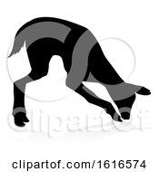 Deer Animal Silhouette