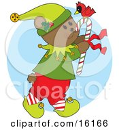 Cute And Friendly Bear In An Elf Costume Carrying A Candycane With A Red Cardinal On Top