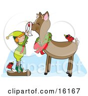 Cute Christmas Elf Standing On A Snow Covered Log By A Red Cardinal Bird Shining Rudolph The Red Nosed Reindeers Nose As Rudolph Smiles And Wears A Wreath Around His Neck And A Bird On His Back