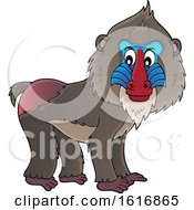 Clipart Of A Mandrill Royalty Free Vector Illustration