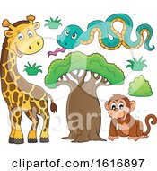 Monkey Snake And Giraffe