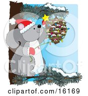 Cute Gray Squirrel Wearing A Santa Hat And Mittens Sitting On A Pine Tree Branch And Decorating A Pinecone With Christmas Lights And A Star