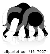 November 17th, 2018: Elephant Safari Animal Silhouette On A White Background by AtStockIllustration