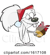 Clipart Of A Cartoon White Christmas Squirrel Holding An Acorn Royalty Free Vector Illustration by toonaday