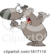 Clipart Of A Cartoon Angry Mama Bear Royalty Free Vector Illustration
