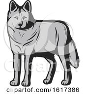 Poster, Art Print Of Wolf