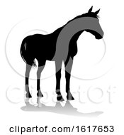 Horse Silhouette Animal