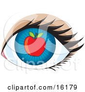 Blue Human Eye With An Apple Concept For Apple Of My Eye