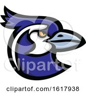 Black Throated Magpie Jay Bird Head Mascot