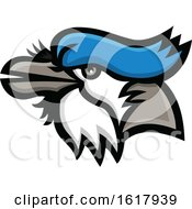 Blue Jay Mascot Head by patrimonio