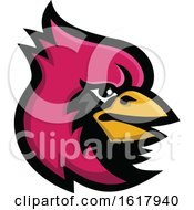 Cardinal Bird Head Mascot