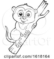 Cute Tarsier In Black And White