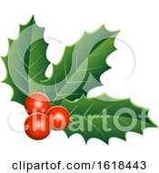Christmas Holly And Berry Design Element