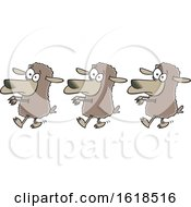 Poster, Art Print Of Cartoon Line Of Sheep Following