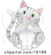 Cute Gray Tabby Cat With Green Eyes Holding A Fishbone In Its Mouth Clipart Illustration Image