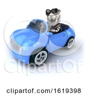 Poster, Art Print Of 3d White Tiger Driving A Blue Convertible Car On A White Background