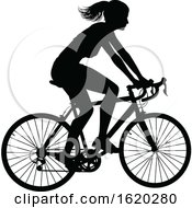 Woman Bike Cyclist Riding Bicycle Silhouette