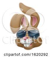 Poster, Art Print Of Cool Easter Bunny Rabbit In Sunglasses Cartoon