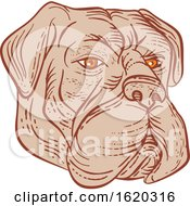 Bullmastiff Head Etching Color