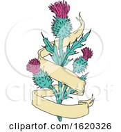 Poster, Art Print Of Scottish Thistle With Ribbon Color Drawing