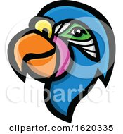 Poster, Art Print Of Parrot Mascot Head