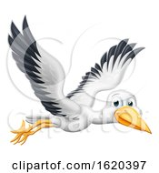 Stork Cartoon Pregnancy Myth Bird Flying