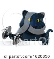 January 16th, 2019: 3d Black Kitty Cat On A White Background by Julos