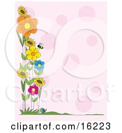 Honey Bee Flying Near A Patch Of Colorful Spring Flowers Along The Border Of A Pink Background
