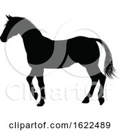 Horse Animal Silhouette