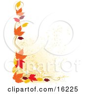 Border Of Autumn Leaves Over A White Background Clipart Illustration Image