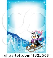 Female Penguin Sledding