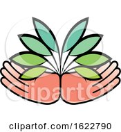 Pair Of Hands With Leaves