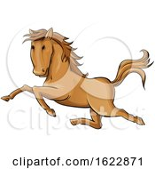 Cartoon Galloping Horse by Domenico Condello