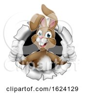 Poster, Art Print Of Easter Bunny Thumbs Up Coming Out Of Background