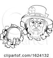 Leprechaun Cricket Mascot Ripping Background