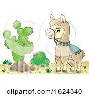 Cute Llama In A Desert