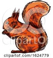Sketched Squirrel