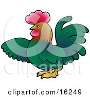 Green Rooster With A Brown Head And Red Comb Using His Wing To Point To The Left