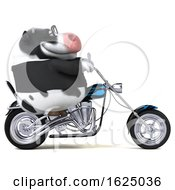 3d Business Holstein Cow Biker Riding A Chopper Motorcycle On A White Background