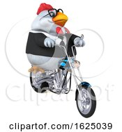 3d Chubby White Business Chicken Biker Riding A Chopper Motorcycle On A White Background