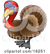 Adorable Brown Turkey Bird With A Purple Face And Red Wattle And Snood Clipart Illustration