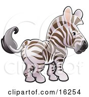 Adorable White And Brown Zebra With Pink Ears Clipart Illustration